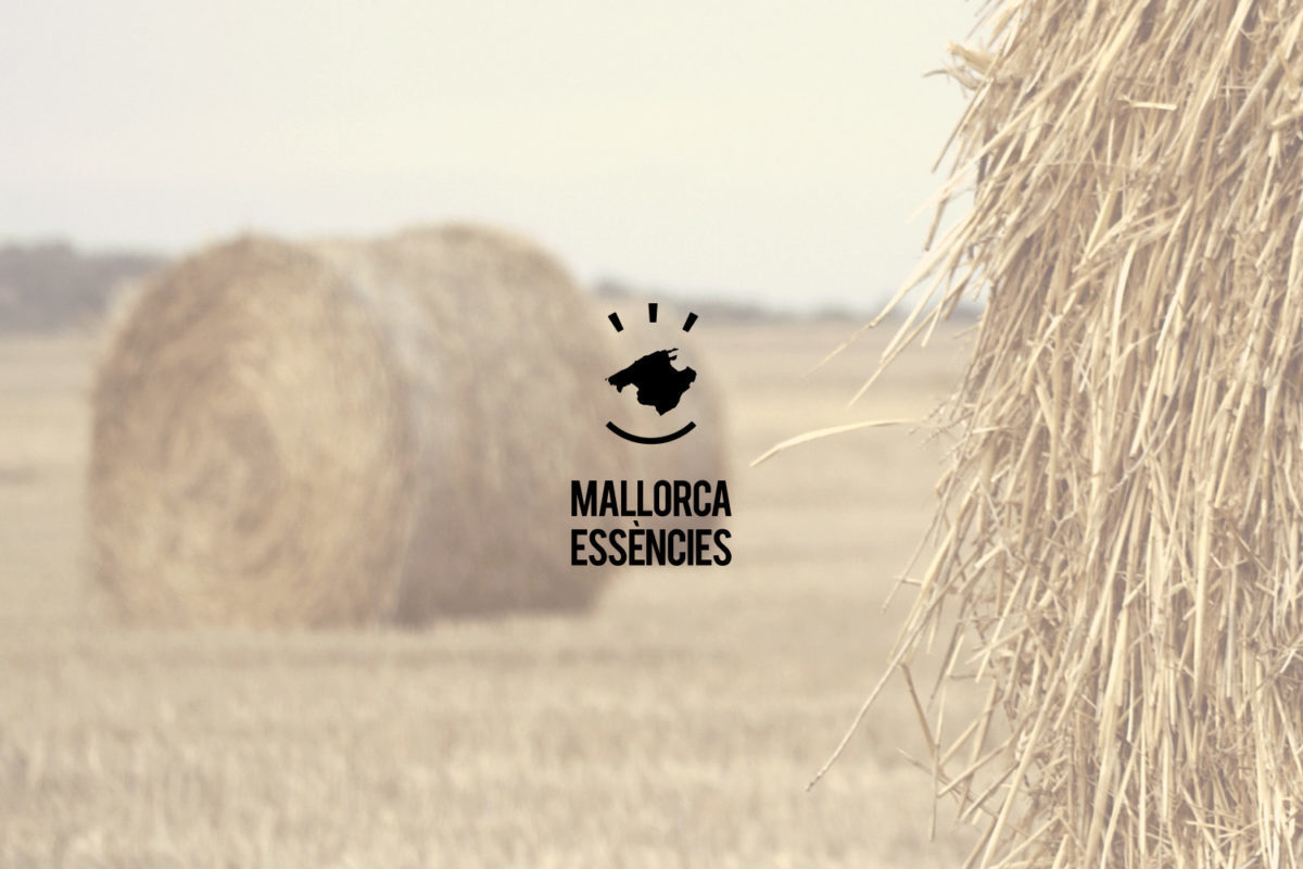 MALLORCA ESSENCIES – LOGO