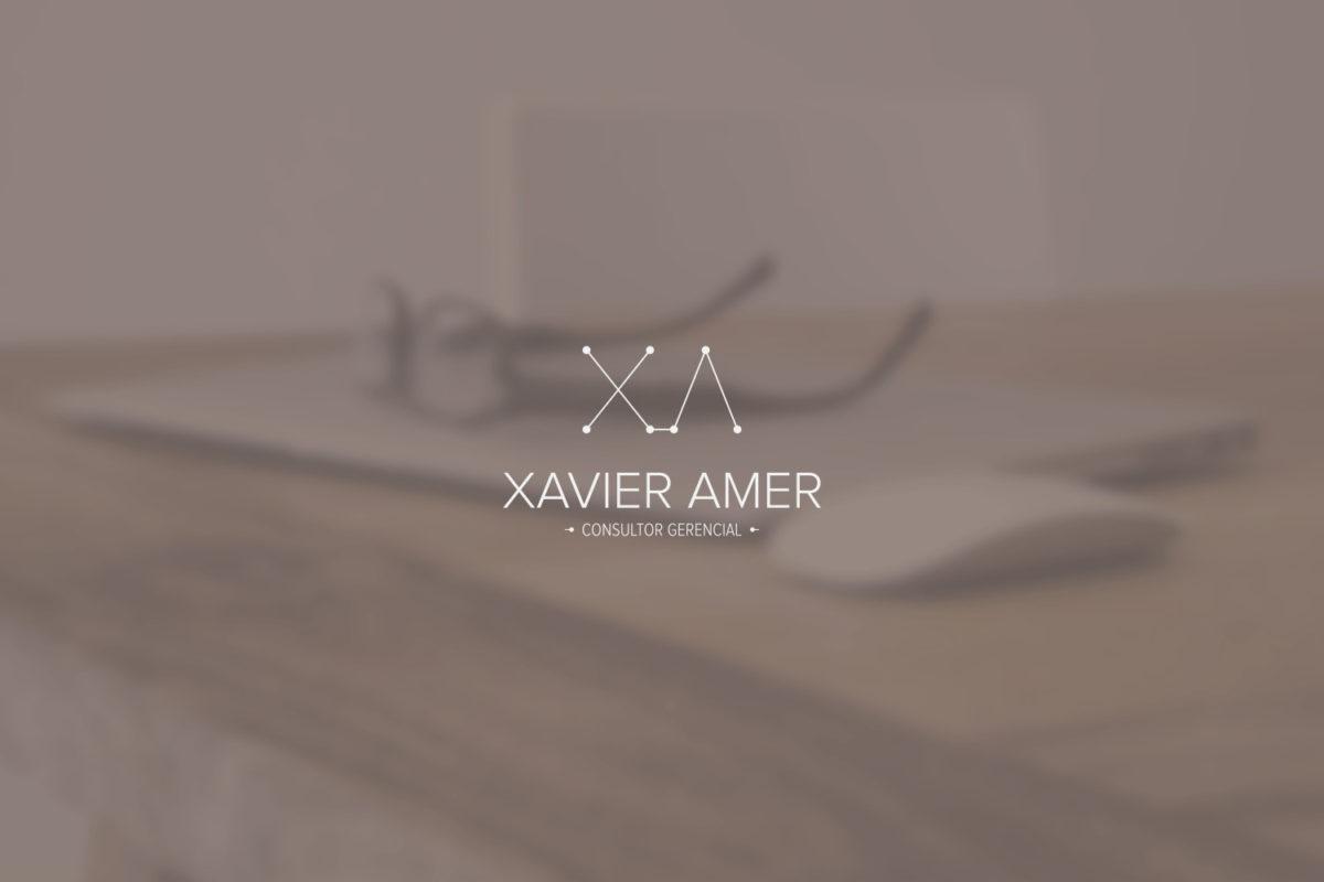 XAVIER AMER consultoria